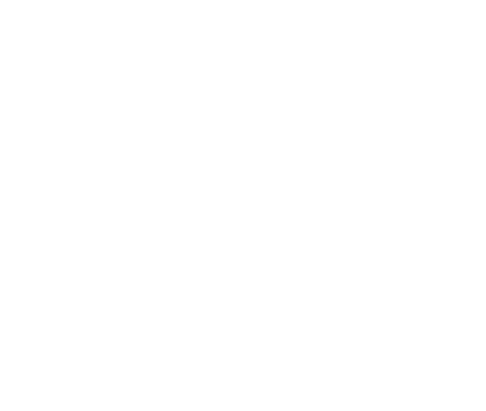 About TerraCom